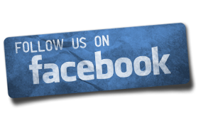 Follow ProMedia on Facebook